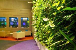 Telstra wall with vertical garden