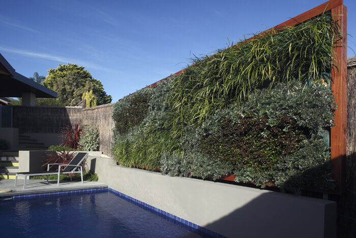 Vertical garden by the pool