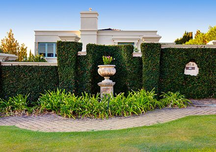Garden wall and landscaping outside a bunglow